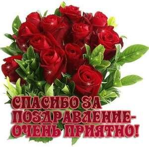 https://www.sdrozdov.ru/media/com_vitabook/images/uploaded/26ce3d5c218d2e88f9bb1cd9d0024bca.jpg
